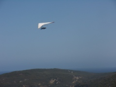 Hang gliding over Frenchman Bay