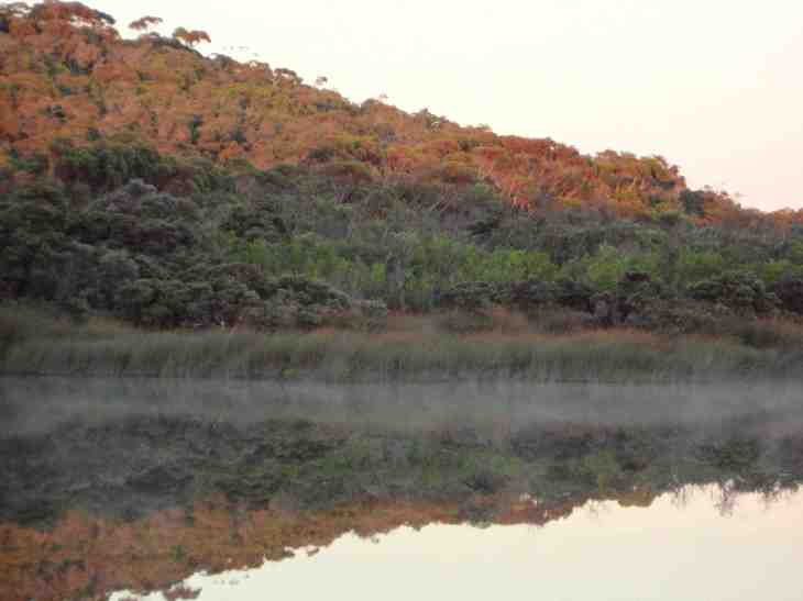 lake-v-early-light